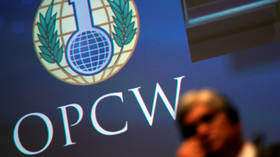 'How is it even possible?' Russia questions OPCW after report claims team was sent to Germany the same day Navalny felt unwell