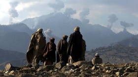 Schrödinger's terrorists: Washington warmongers suddenly worried about Al-Qaeda and ISIS, amid Afghanistan agony